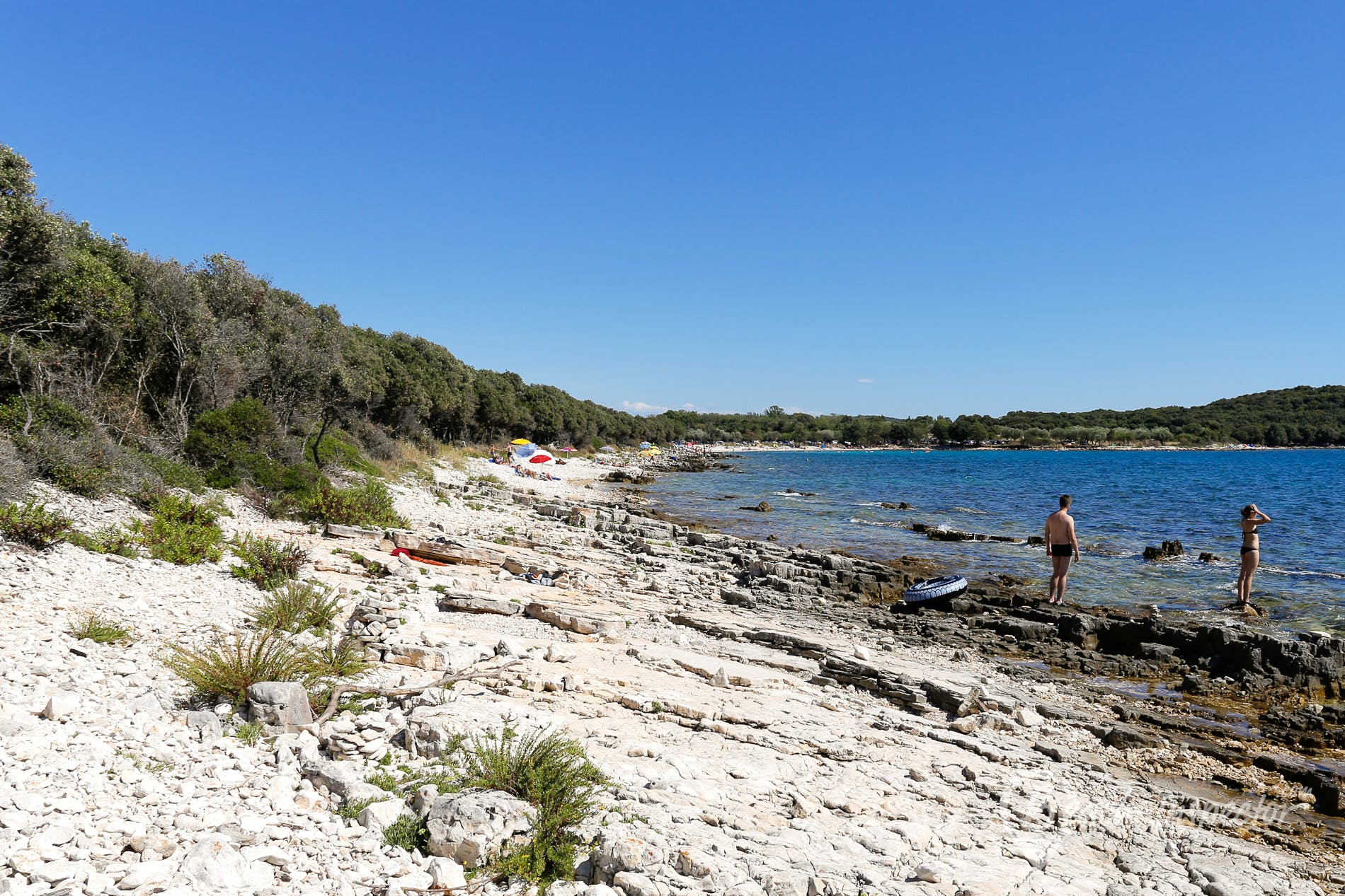 Beach Cisterna Beach, Istria, Croatia