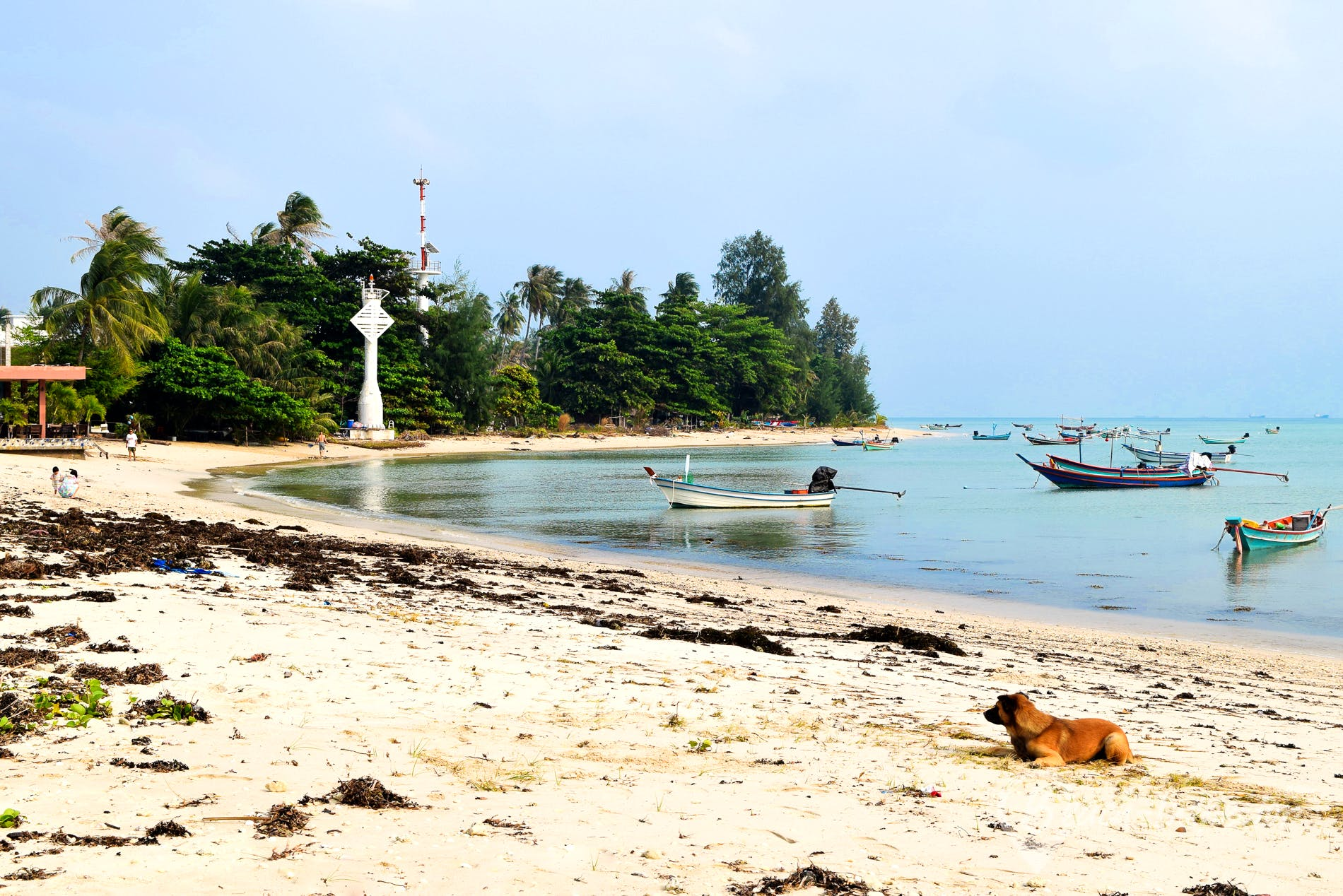 Beach Thong Sala Beach, Koh Phangan, Thailand