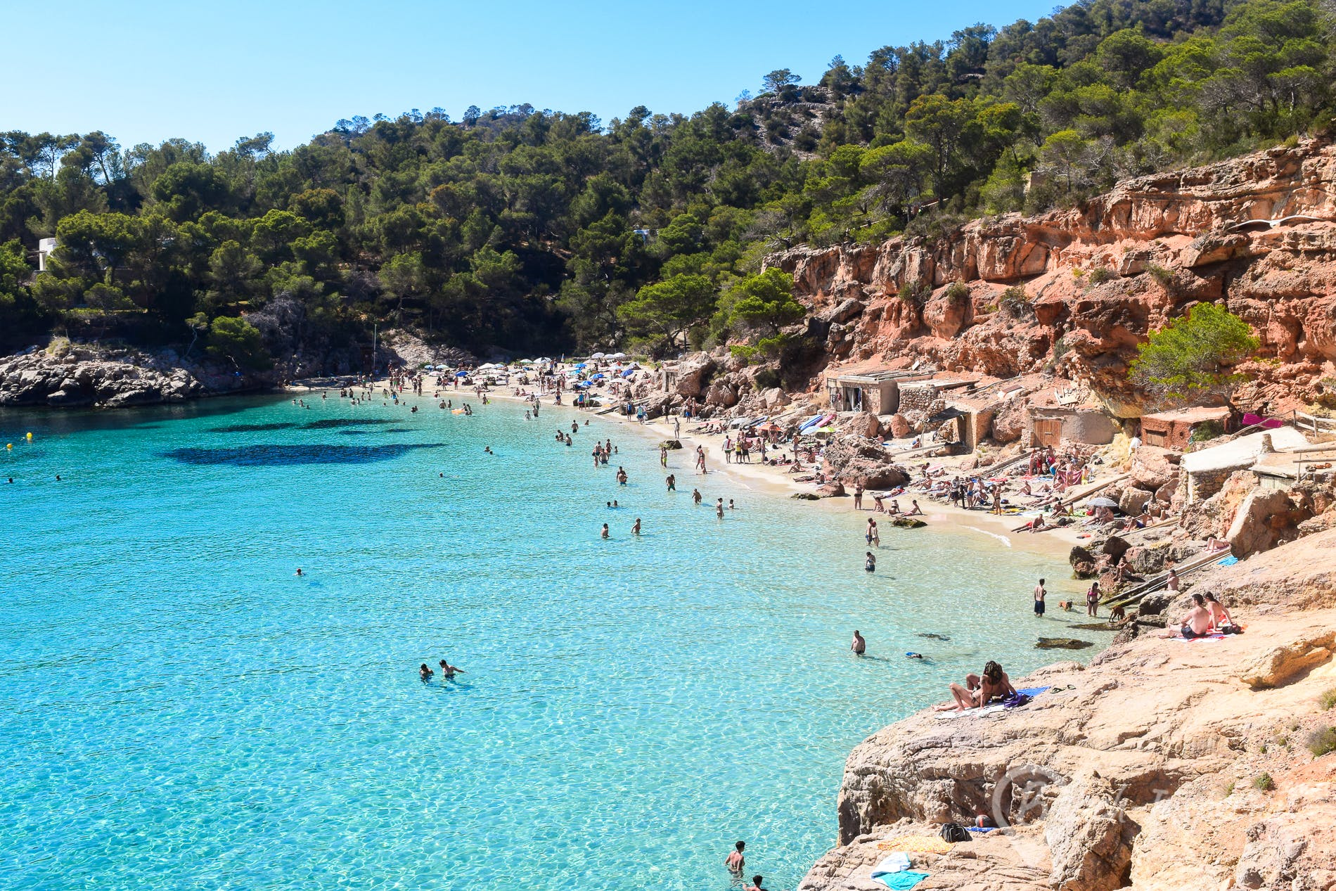 cala salada ibiza all information and insider tips for the beach