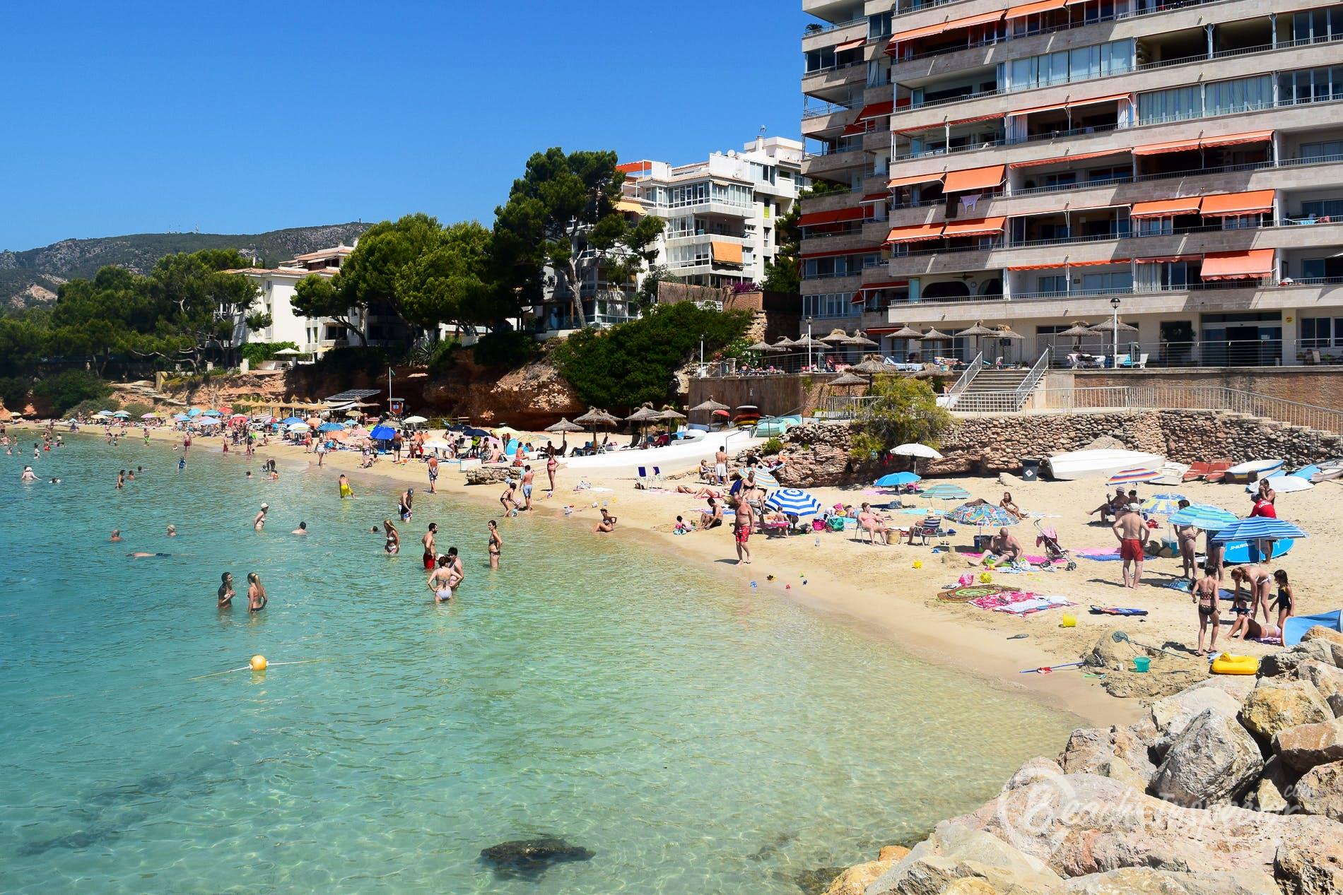 Beach Playa Punta Portals, Majorca, Spain
