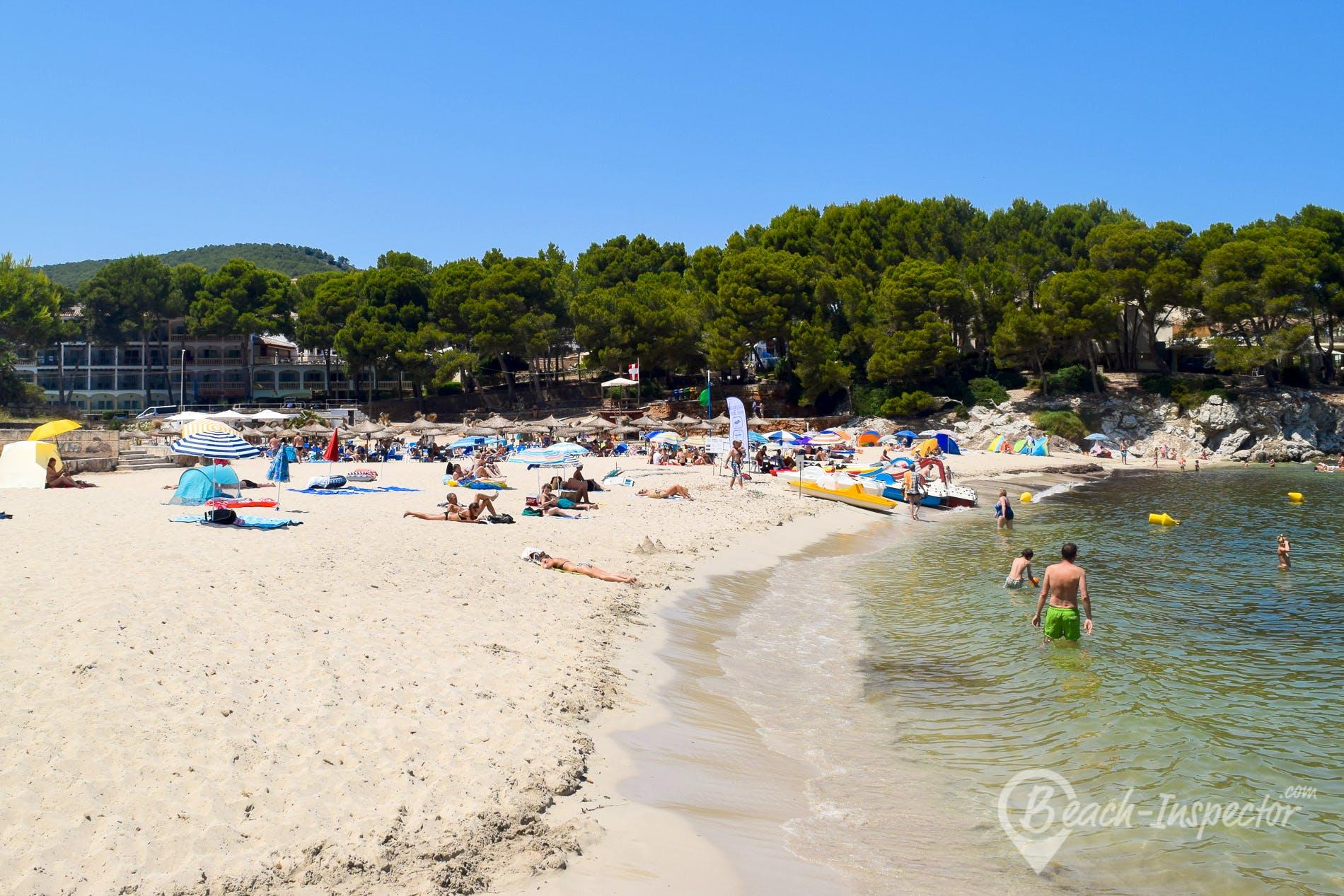 Playa Playa Font de Sa Cala, Mallorca, España