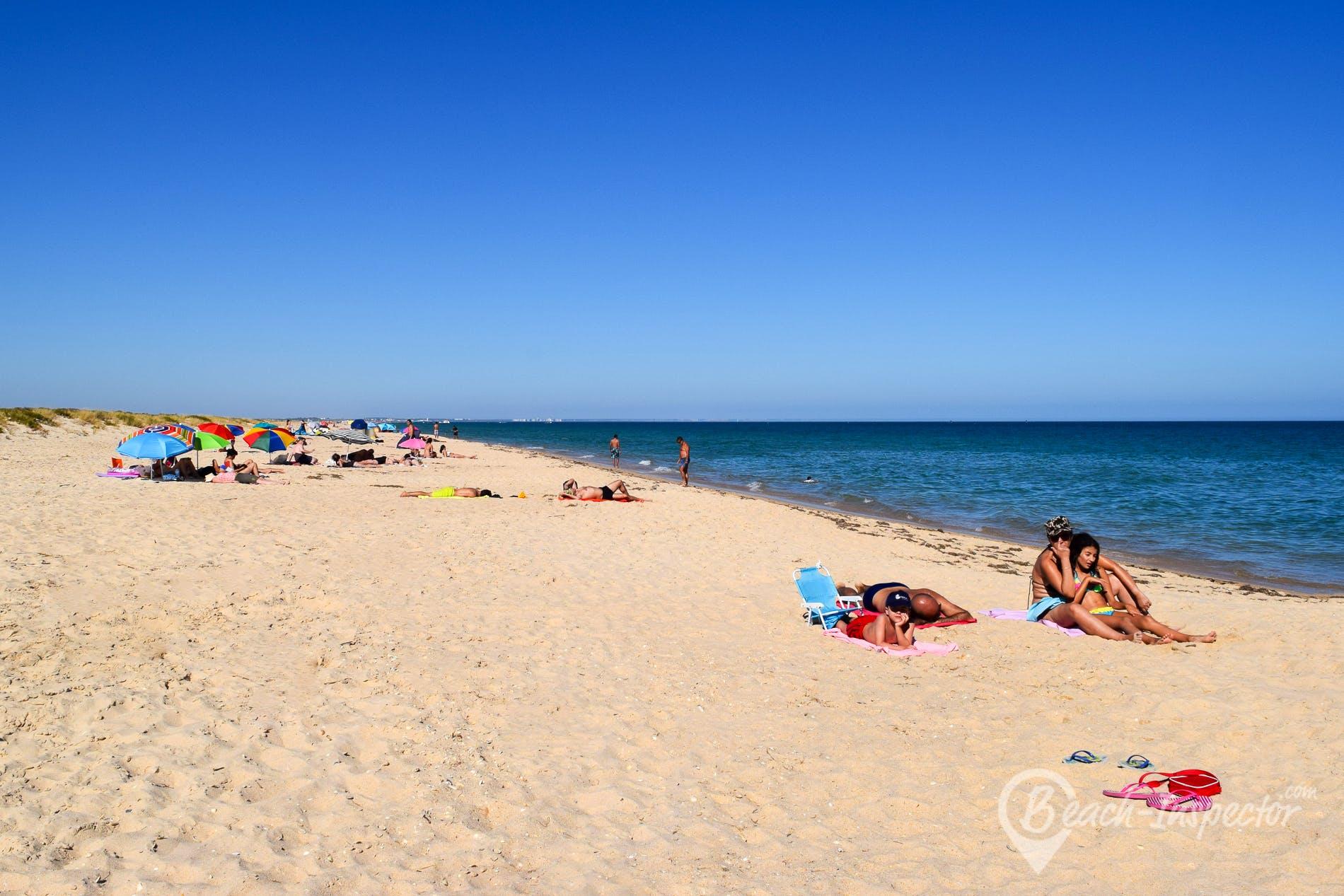 Beach Praia da Terra Estreita, Algarve, Portugal