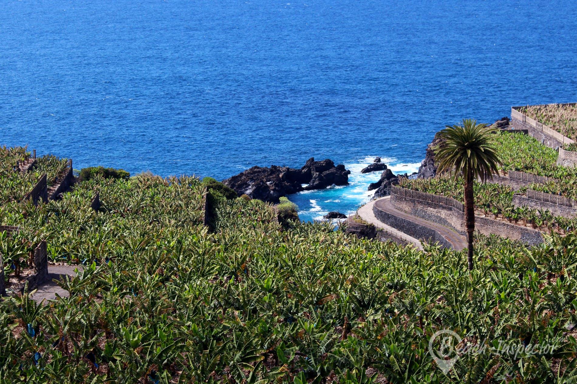 Playa Playa del Guincho, Tenerife, España