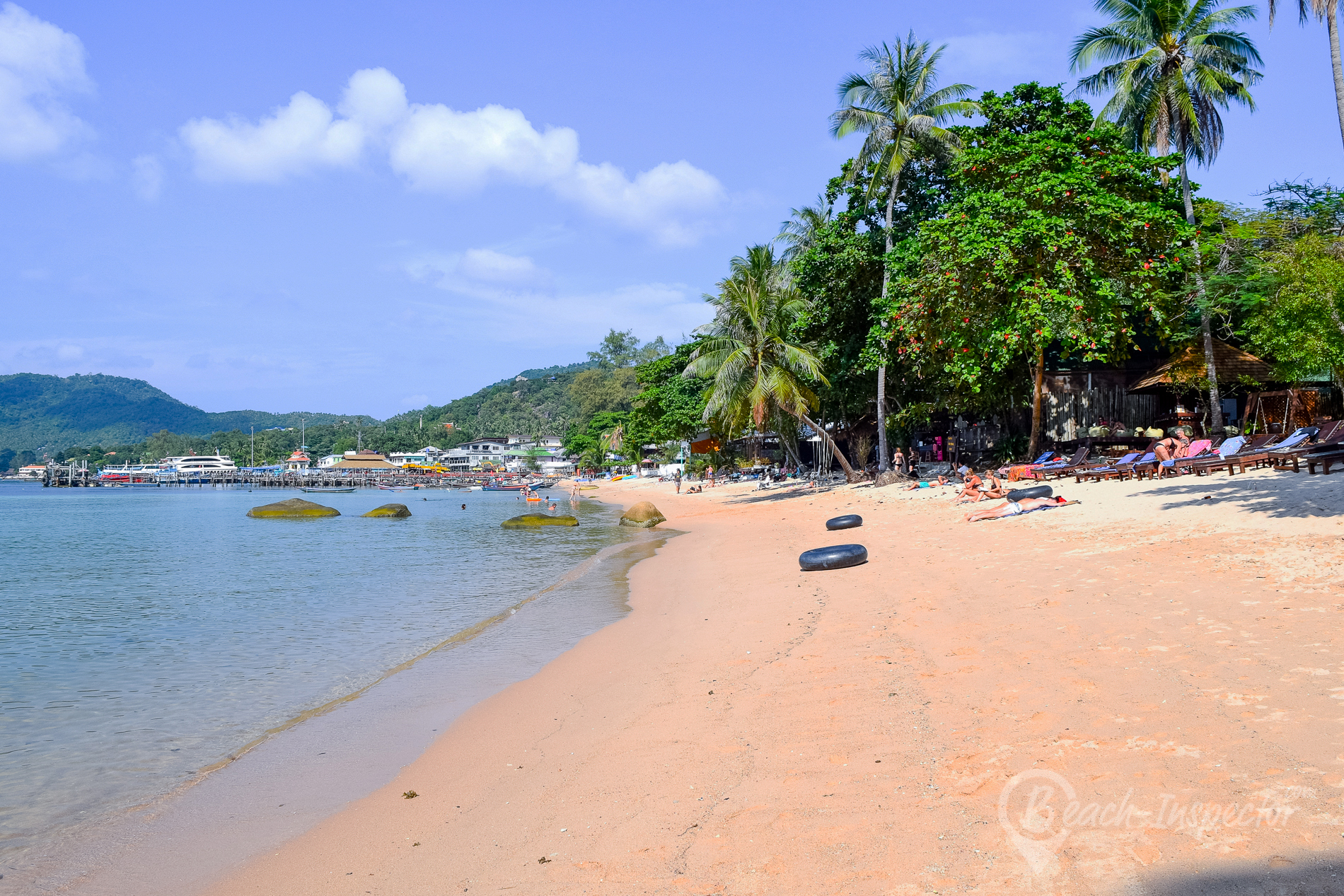 Mae Haad Beach Koh Tao Pictures videos insider tips