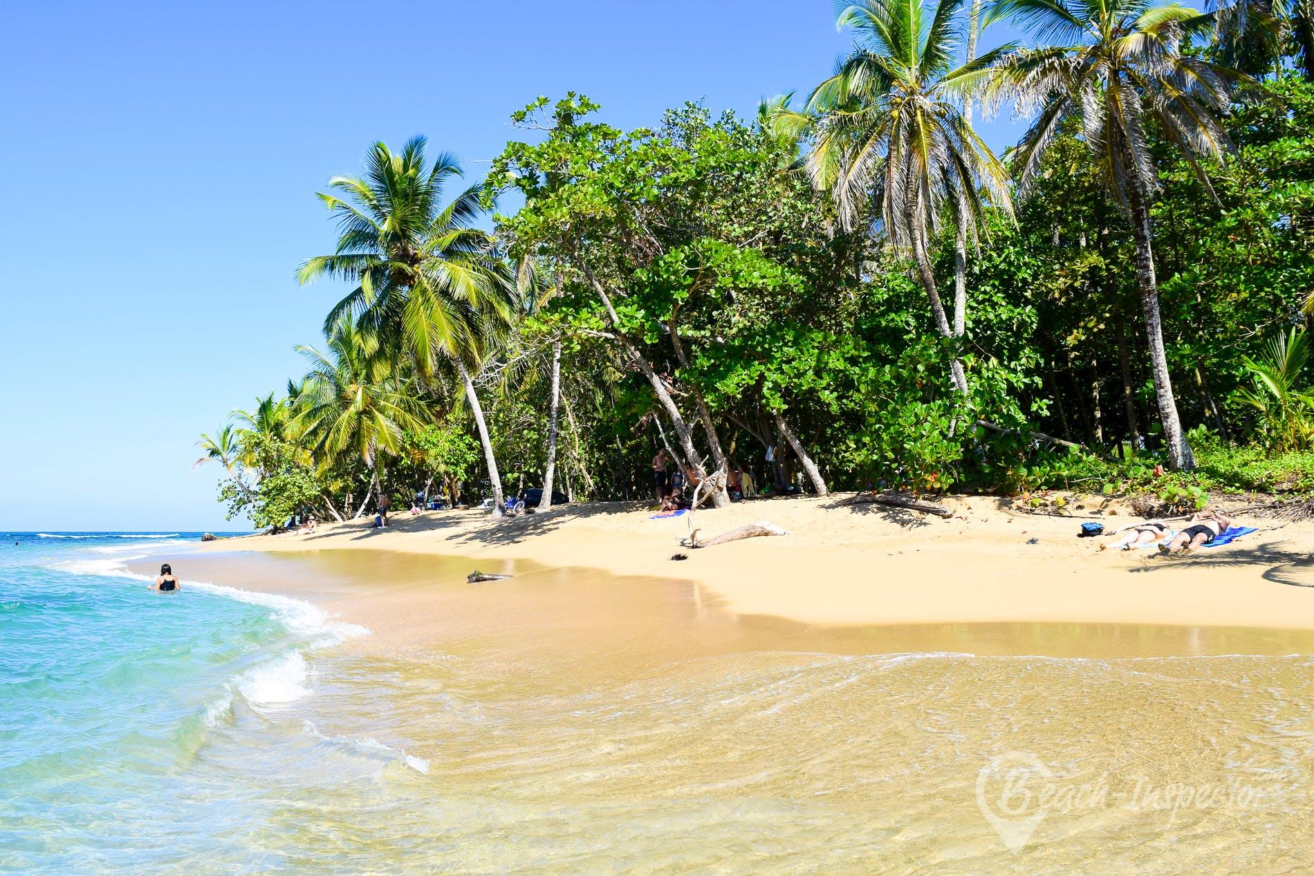 Strand Playa Punta Uva, Costa Rica, Costa Rica