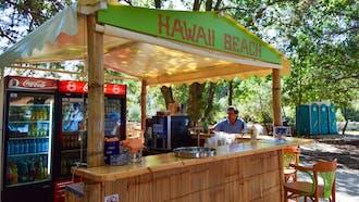 Hawaii Beach Bar