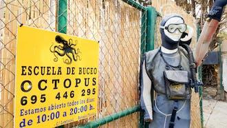 Octopus Escuela de Buceo